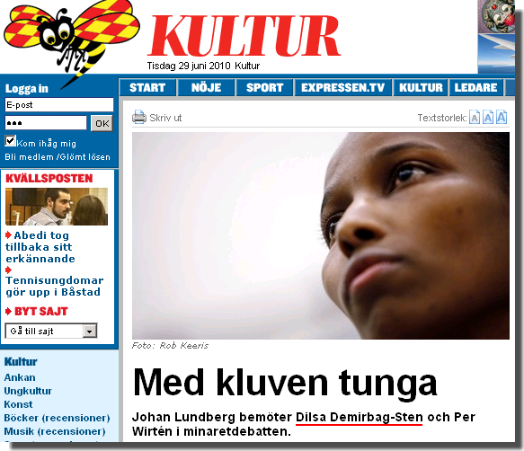 Expressen 2010-06-29 Screenshot