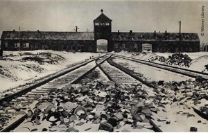 http://www.hmd.org.uk/assets/downloads/29_Gates_Railway_and_Tower_at_Auschwitz_Birkenau.jpg