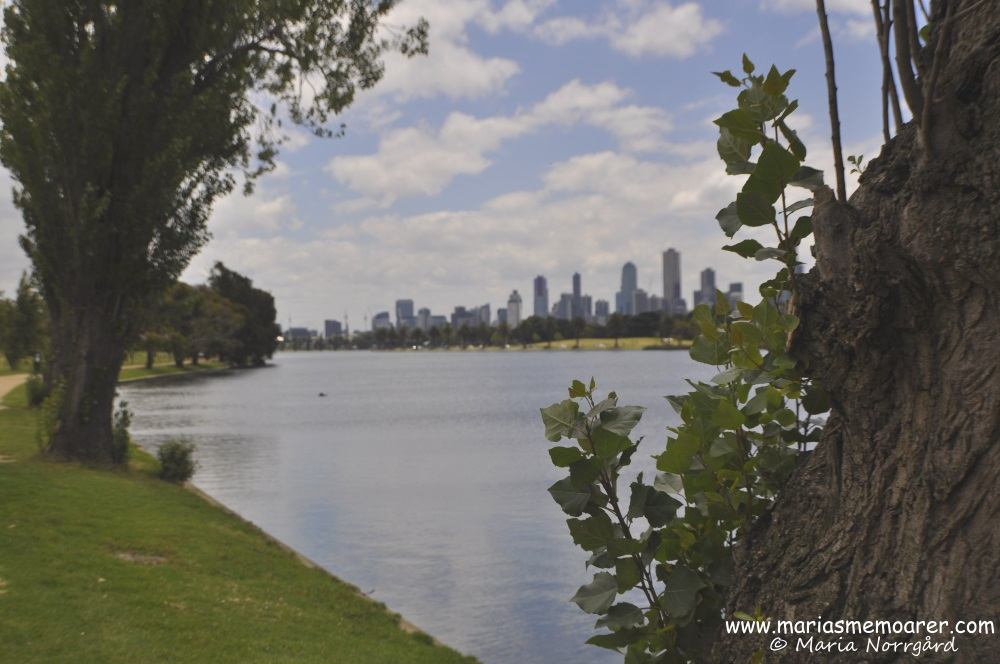 Nice park in Melbourne - Albert Park