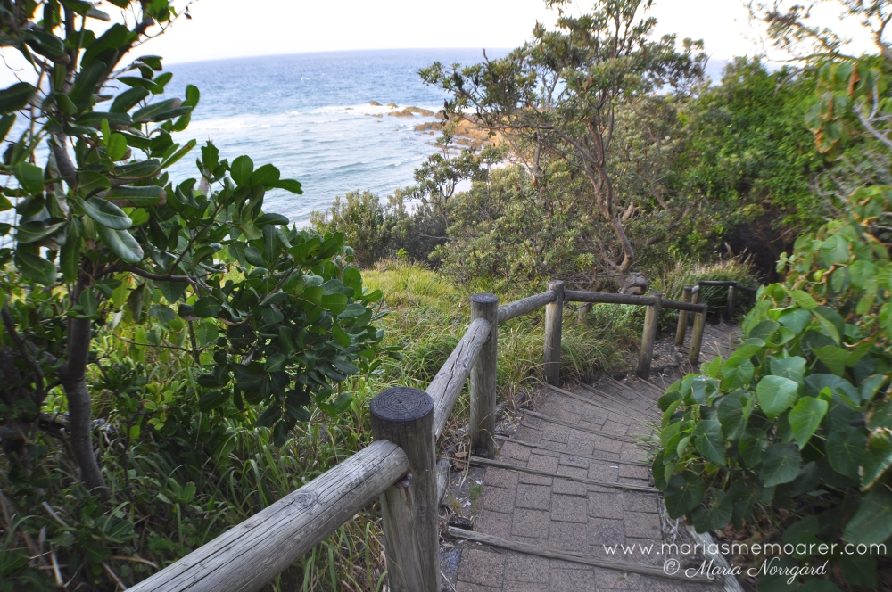 coastal walking track in Byron Bay, Australia