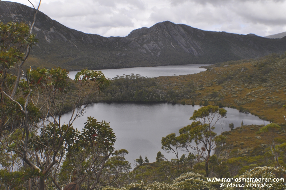 pretty lake landscape in Cradle Mountain, Tasmania