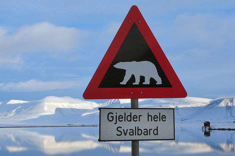dream island destinations - Svalbard