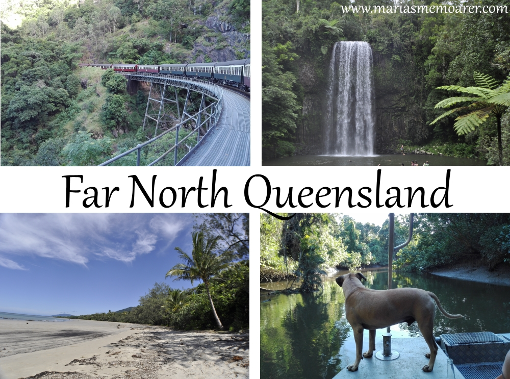 worth visiting in Cairns: Daintree, Cape Tribulation, Atherton Tablelands, Kuranda - sevärdheter nära Cairns