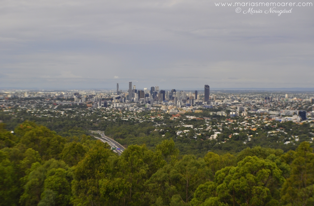 Mount Coot-Tha Brisbane Lookout / vy över staden Brisbane, Queensland