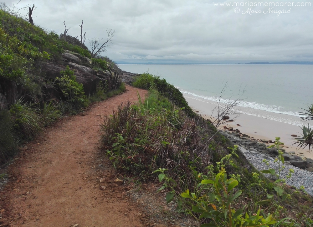 Noosa National Park, coastal walk, Australia