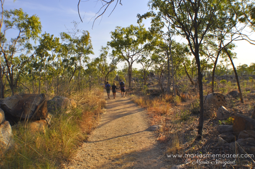 Nitmiluk National Park, Baruwei walk, Australian nature
