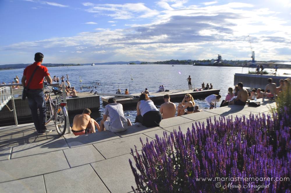 things to do in Oslo - enjoy a summer day swimming at Tjuvholmen