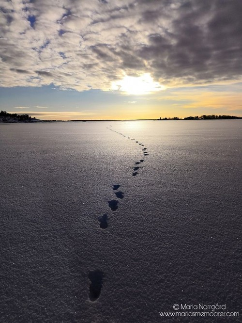 walking on the sea - winter activites in Ostrobothnia Finland