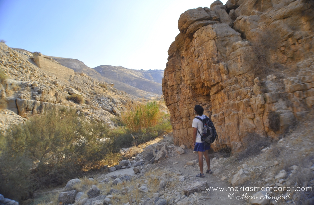 hiking adventures in West Bank and Israel