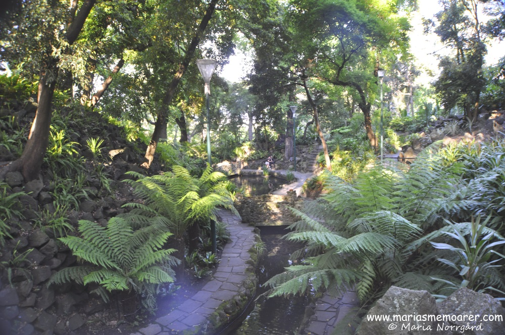 Things to see in Melbourne, Victoria - Royal Botanic Gardens