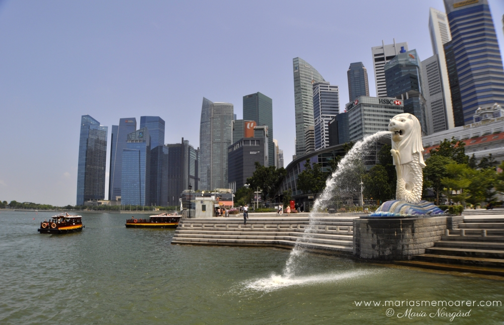 Big tourist attraction in downtown core of Singapore - Merlion