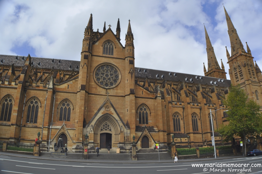 Beautiful St Mary's Cathedral in Sydney, Australia