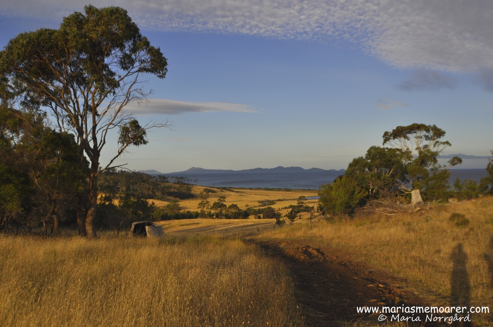 countryside landscape on the east coast of Tasmania / landbygd vid östkusten, Tasmanien