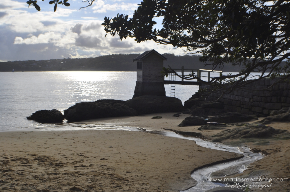 Camp Cove Beach in Watsons Bay, Sydney, NSW, Australia / Australien