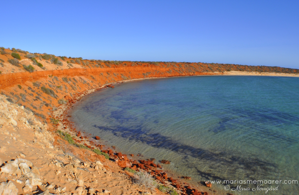 Skipjack Point Lookout - Shark Bay, Australia
