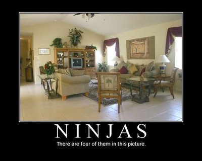 Ninjas - there are four of them in this picture.jpg