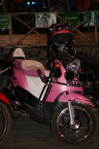 Elins moped