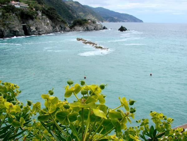 View to south east from Monterosso