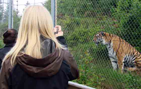 Helena with tiger