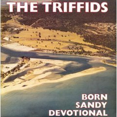 triffids born sandy