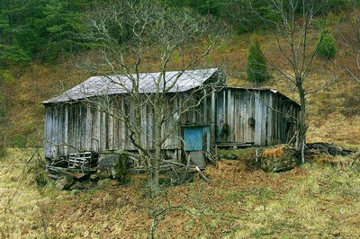 http://en.wikipedia.org/wiki/Image:Shack_in_Pigeon_Forge%2C_TN_by_Zachary_Davies.jpg