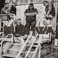 intervju med Bushwa
